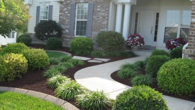 Photo of Make the most of Your Home Landscape